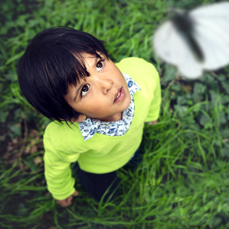 child looking at butterflies
